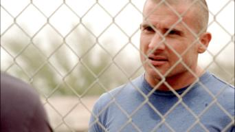 Prison Break: Season 3: Dirt Nap